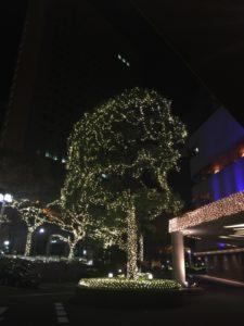 chiristmas tree of Hilton Tokyo in Japan | Ghichi.com